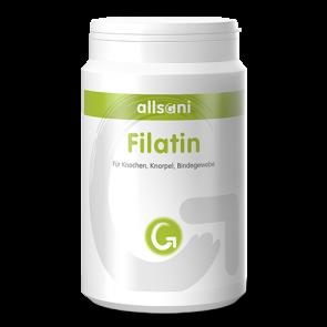 Filatin